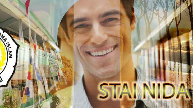 stainida-header1