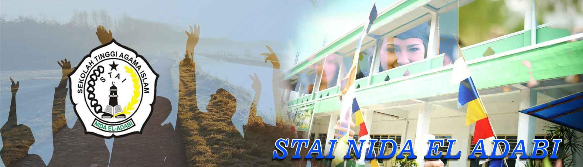 stainida-header2